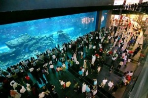 Attractions such as the aquarium in Dubai Mall have turned the emirate into a leading shopping destination.  Nicole Hill / The National